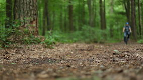 Man på bycicleritter förbi i skog arkivfilmer