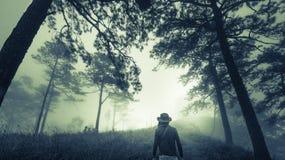 Man på den mörka dimmiga skogbanan i dimma, allhelgonaaftonbegrepp Arkivbild