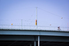 Man på en bro med cykeln Arkivfoton