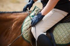 Man på en häst Fotografering för Bildbyråer