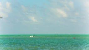 Man på kitesurf i Miami lager videofilmer