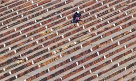 Man på trappa av ingången av Jama Masjid Mosque, gamla Delhi, Indi Fotografering för Bildbyråer