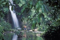Man på tropiska vattenfall, Trinidad Royaltyfri Bild