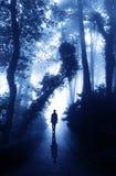 Man på vägen i dimmig skog Arkivbilder