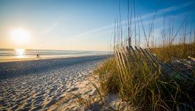 Man på en cykelridning på stranden på soluppgång Fotografering för Bildbyråer