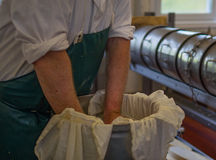 Man packing cheese ready for processing. Man packing cheese into a metal container ready for processing Royalty Free Stock Photography