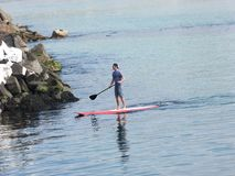 A man paddle boarding at Portrush harbour Co. Antrim Northern Ireland. Space for text copy stock photos