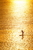 Paddleboarding in sunset Royalty Free Stock Photo