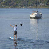 Man paddleboarding Royalty Free Stock Images