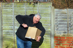 Man in pain carrying heavy box. An elderly man in pain carrying a very heavy box Royalty Free Stock Photos