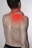 Man with pain in shoulder / back. Pain relief,  chiropractic concept Stock Image
