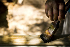 Man painting wood with lacquer natural color. Stock Image
