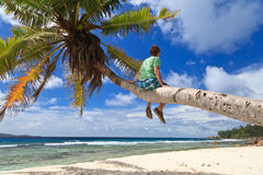 Man on palm in tropical beach Stock Photos