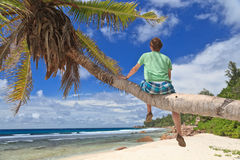 Man on palm in tropical beach stock images