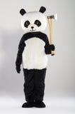 Man in panda costume Stock Image