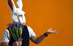 Man in paper rabbit mask holds a bouquet of irises flowers on a yellow studio background. stock image