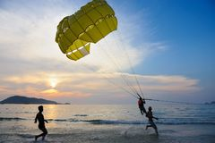 Man parasailing at sunset Stock Image