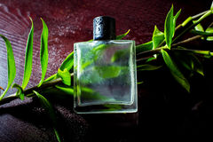 Man parfume. With a freen petals on dark wet wood stock photography