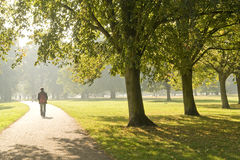 Man in the park. Man walking in the park Royalty Free Stock Photography