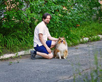 Man in the park with his pet Sheltie dog breed. Stock Photography