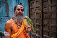 Man with parrot, Varanasi, India. Man in orange sari with paint markings holding green parrot outdoors in Varanasi, India Stock Image