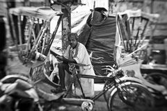 A man peddles a cycle rickshaw  in Varanasi Royalty Free Stock Photography