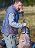Man peeling log Royalty Free Stock Images