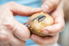 Man peeling potato Royalty Free Stock Image
