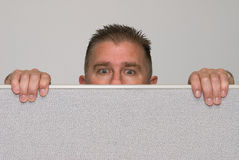 Man peering over office cubicle. A male office worker peers over a cubicle because he is nosey Stock Images