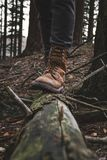Man with perfect hikinng boots standing on the fallen tree with forest on background. Close up photo of iluminated shoes. Man with perfect hikinng boots Stock Photography