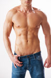 Man with perfect torso. Close-up of young muscular man with perfect torso standing against white background Royalty Free Stock Photo