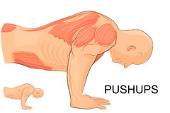 The man performing push-UPS Stock Photo