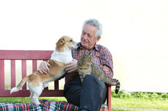 Man with pets Royalty Free Stock Photos