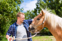 Man petting horse on farm Stock Photos