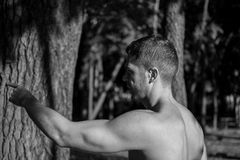 Man photographed in street workout session. Male working out in the forest early in the morning. He is pointing to the next exercise royalty free stock photo