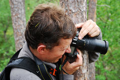 Man photographing from behind the tree. Stock Photos