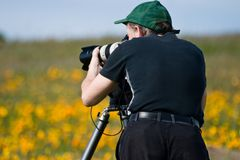 Man Photographing in Field of Wildflowers. Man with tripod photographing spring wildflowers in a field Stock Images