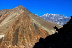 Man photographing mountains in Nepal. Kingdom of Mustang. Himalayas Royalty Free Stock Photos