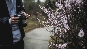 Man photographing spring flowers