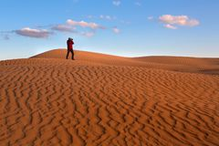 A man photographs the sand dunes of the desert. Photographer in the desert royalty free stock photo