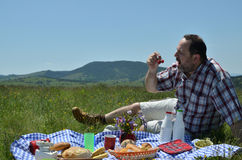 Man on Picnic Eating Cherries Stock Photo