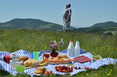Man and Picnic on Sunny Day Stock Photo