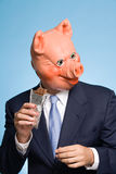 Man in a pig mask eating chocolate Stock Image