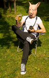 Man pig photographer celebrating Royalty Free Stock Photos