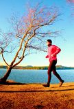 Man in pink jacket runs at coastline. Sport and healthy lifestyle concept and jogging cross country training workout Royalty Free Stock Image