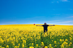 Man with pinwheel standing in a field Royalty Free Stock Image