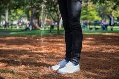 Man piss in the public city park or street and breaking the law. Toilet problem concept Royalty Free Stock Photography