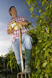 Man with pitchfork in garden, low angle view Stock Photos
