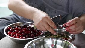 Man pitting sour cherries stock footage