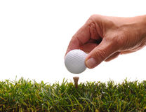 Man Placing Golf Ball on Tee Royalty Free Stock Image